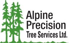 Alpine Precision Logo 2015